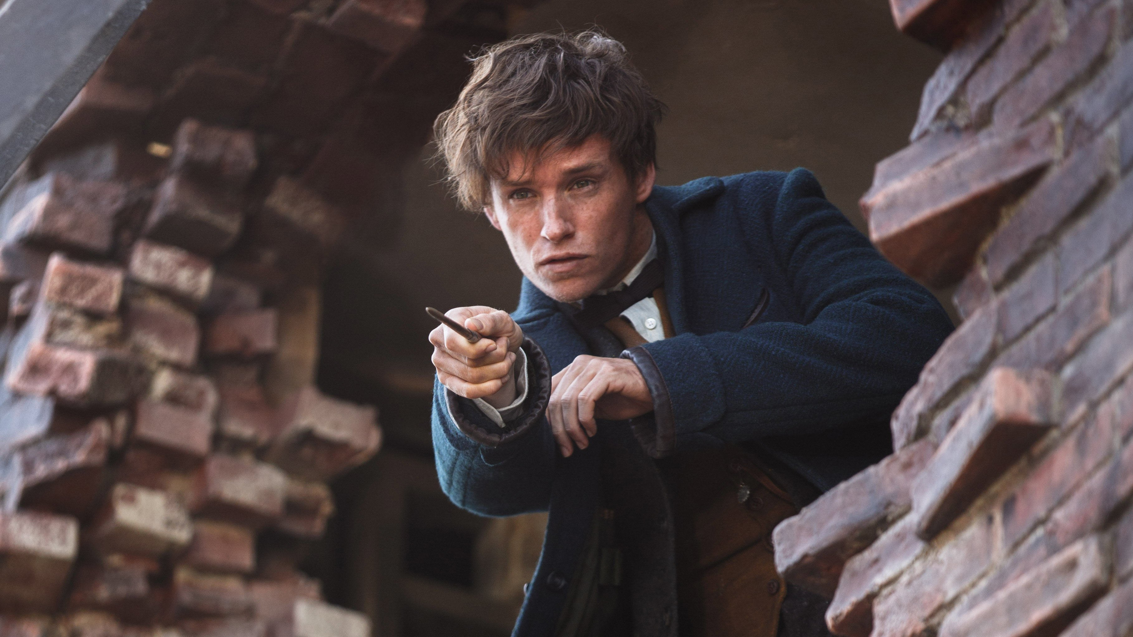 Image result for scamander newt